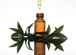 aromatherapie-aulnoye-aymeries-hautmont
